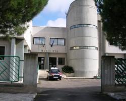 sede del COMUNE DI TORCHIAROLO